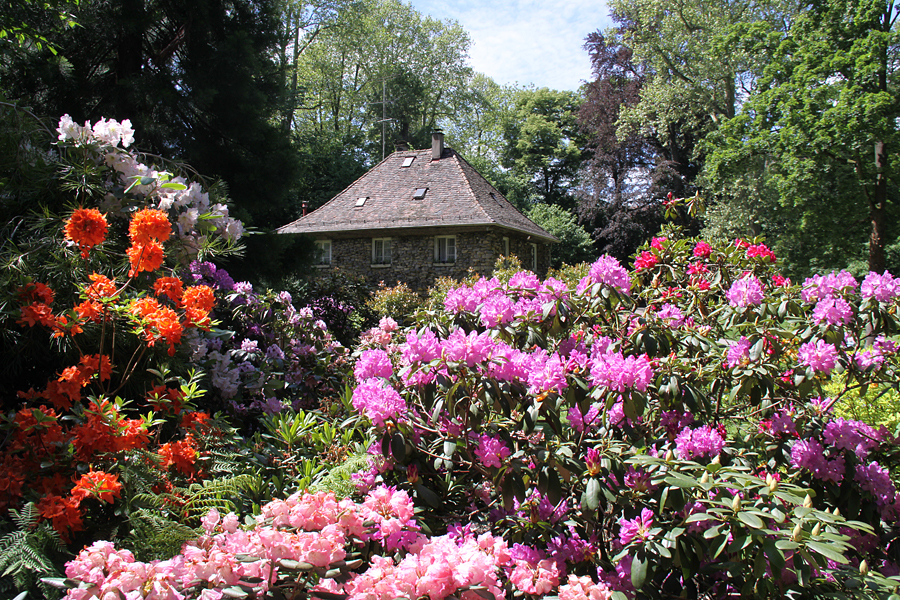 Phonk - Blühendes Barock (Gärten)