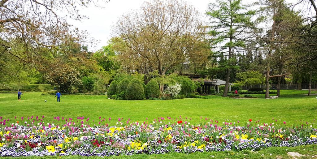 Parks in Heilbronn - Wertwiese (Blumenbeet)