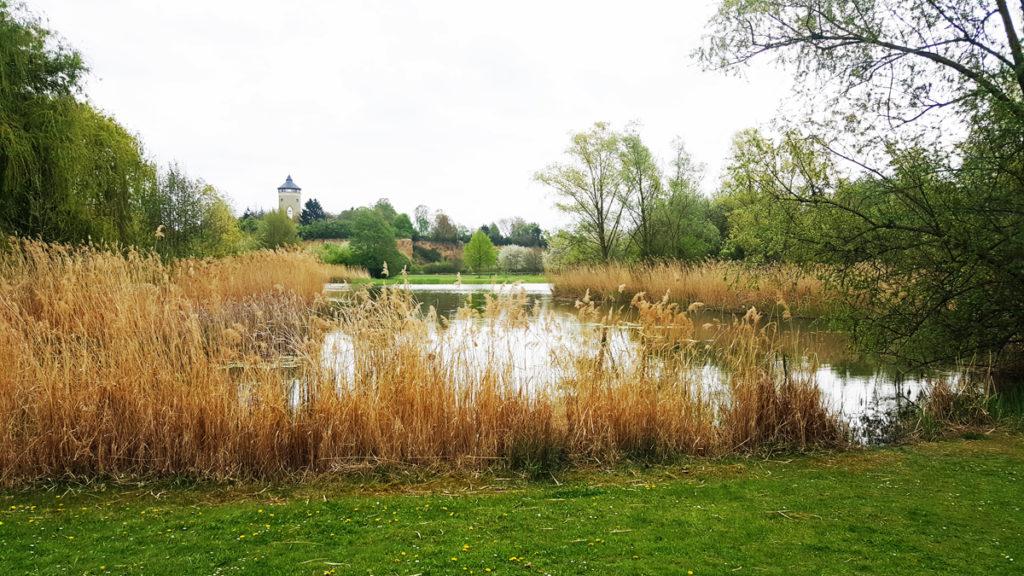 Parks in Heilbronn - Ziegeleipark und See