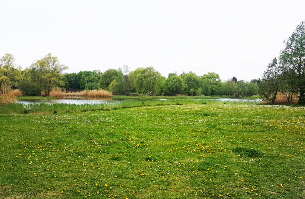 Parks in Heilbronn - Ziegeleipark