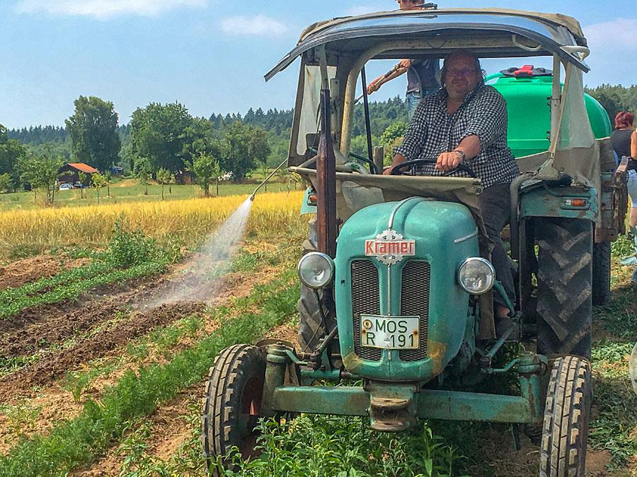 Solawi - Solidarische Landwirtschaft Heilbronn Mosbach 4