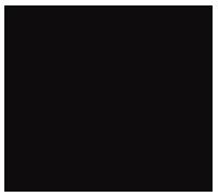 Phonk der Reporter - Footer Logo